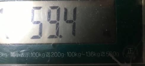 体重59.4㎏1