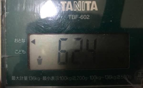 体重62.4㎏