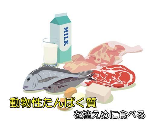 動物性たんぱく質を控えめに食べる